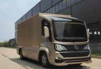 Chinese based company Dayun made a fully electric delivery van 土豪金 (Tyrant Gold)